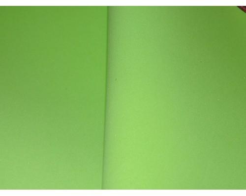 Фоамиран китайский 1 мм, салатовый цвета (25*25)