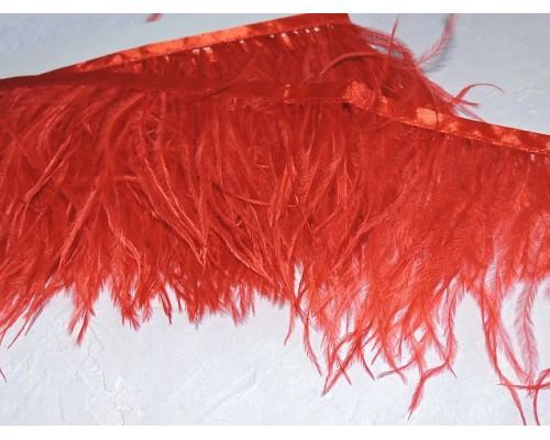 Перья страуса на ленте, цв. красный - отрез 25 см